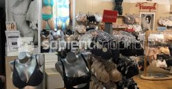 Crisul Shopping Center – spatii comerciale